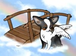 Rainbow Bridge Chihuahua #2