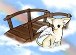Rainbow Bridge Chihuahua #7