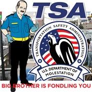 TSA Parodies