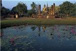 Buddist Lotus Garden