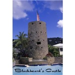 Blackbeard's Castle