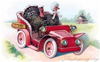 Turkey at the Wheel