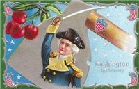 Washington his Bravery