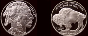 Both sides 2001 Silver Indian/Buffalo Coin Black