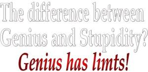 Genius & Stupidity