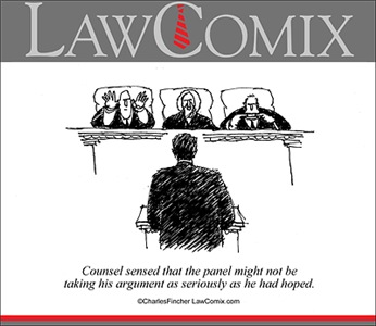 Appellate Panel Not Serious