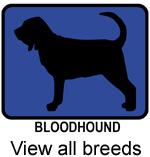 Dog Breed (blue)