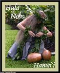 Hula Noho