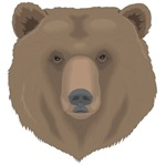 Grizzly Bear T-shirts and Gifts