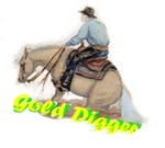 Reining Horse, Gold Digger