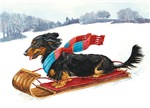 Dachshund Sled Ride