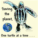 Gifts: Turtle Keepsake Boxes, Framed Tiles & Coas