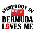 Somebody In Bermuda T-shirt