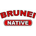 Brunei Native