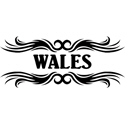 Tribal Wales T-shirt