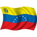 Wavy Venezuela Flag