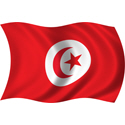 Wavy Tunisia Flag