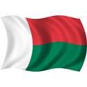 Wavy Madagascar Flag