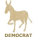 Vintage Democrat