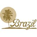 Palm Tree Brazil
