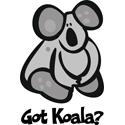 Got Koala Bear T-shirt