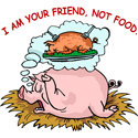 Pigs Are Friends