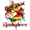 Butterfly Zimbabwe