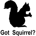 Got Squirrel