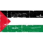 Vintage Palestine T-shirts, Palestine T-shirt