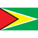 Guyana T-shirt, Guyana T-shirts