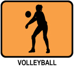 Womens Volleyball (orange)