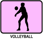 Womens Volleyball (pink)