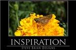 INSPIRATION25