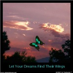 Your Dreams Have Wings