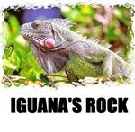 IGUANA'S ROCK