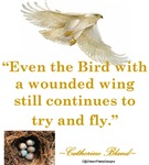 Wounded Wing Quote Design