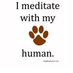 I Meditate with My Human