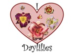 I Love Daylilies