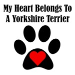My Heart Belongs To A Yorkshire Terrier