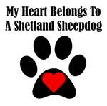 My Heart Belongs To A Shetland Sheepdog