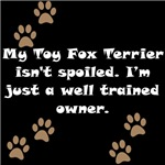 Well Trained Toy Fox Terrier Owner