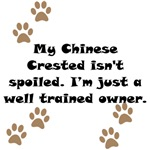 Well Trained Chinese Crested Owner