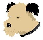 Scruffy Dog