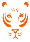 Orange Tiger Face