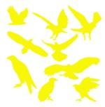 Yellow Eagles Silhouette