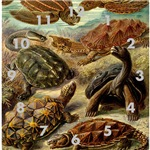 Beautiful Classic Turtle Art
