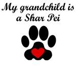Shar Pei Grandchild