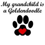 Goldendoodle Grandchild