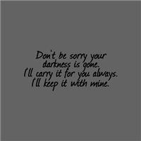 Lumen's Darkness
