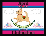 Chihuahua Calendar Rocking Dog Products Gifts